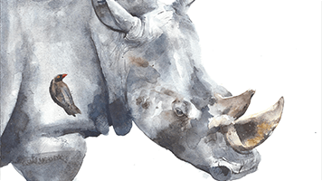 If you're a water color fan, just set this Rhino theme on your homepage! The Rhino theme comes with it's own color set, plus it's just one click away!