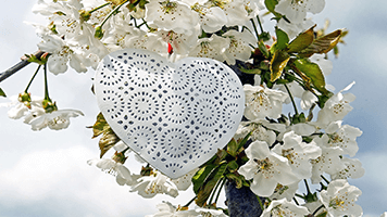Spring is here and love is in the air! Can you feel this spring love? If you don't, just try our Spring Love theme on your homepage and it will get you in a romantic mood in no time!