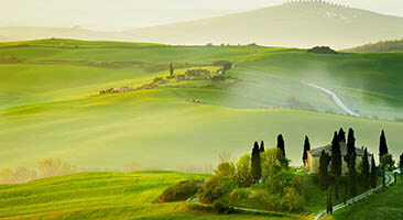 No time for vacation? No worries, we'll take you on a trip around the beautiful landscapes of Tuscany! Lose yourself into the green pastures of the Tuscany wallpaper!