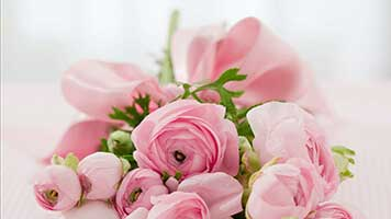 If you like pink roses, get this free pink roses wallpaper on your computer. Pink Roses are the best virtual gift you could send to your loved ones! Why not have them on your homepage? They come with their own color set, too!