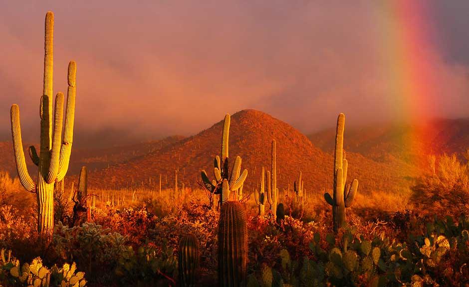 Regenbogen In Der Wüste Hintergrundbild Ur Anpassung Von Ur