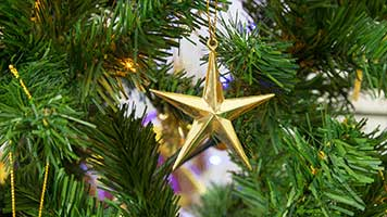 A golden star here, a beautiful globe there and the Christmas tree is ready! You've already finished your, right? If not, we may have some ornamentation ideas for you, set the Golden Star wallpaper on your homepage and start decorating!