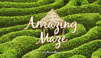 Is finding your way around getting harder and harder? Here's a challenge, try to get to the other side of this amazing maze. If you like Amazing Mazes, get this free Amazing Maze wallpaper on your computer.
