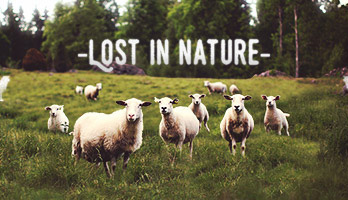 It's a great feeling to get lost in nature! We can show you how! Apply the Lost In Nature wallpaper on your homepage and get ready to live an authentic rural adventure.